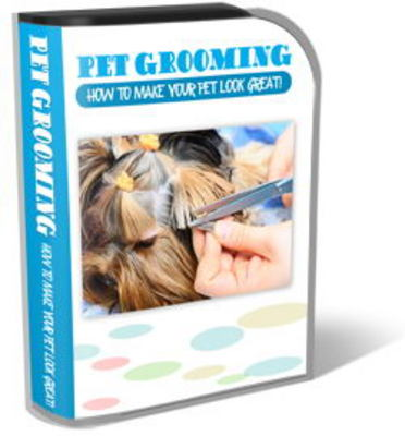 Product picture Pet Grooming Website Template